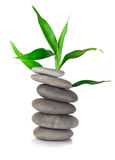 Zen stones and bamboo Royalty Free Stock Photography