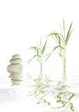 Zen Stones and Bamboo Grass Stock Photo