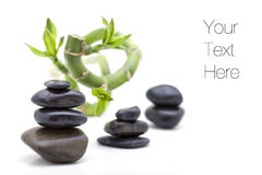 Zen stones with bamboo plant Stock Image