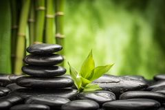 Zen stones. Zen basalt stones and bamboo Royalty Free Stock Photo