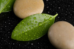 Zen stones on black with water drops Stock Image