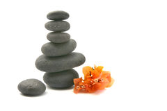 Zen stones with bouganvilla flowers isolated. Royalty Free Stock Images