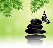 Zen stones and butterfly Royalty Free Stock Image