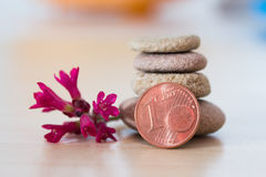 Zen stones,Coin and red flower Stock Photography