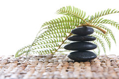 Zen stones with a fern Stock Photography