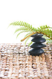 Zen stones with a fern Royalty Free Stock Photo