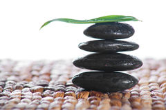 Zen stones with a fern Royalty Free Stock Images