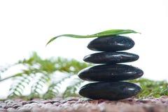 Zen stones with a fern Stock Photos