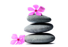 Zen stones and flower Royalty Free Stock Image
