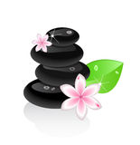 Zen stones with flower and leaf Stock Photo