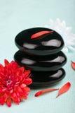Zen stones and flowers Royalty Free Stock Photo