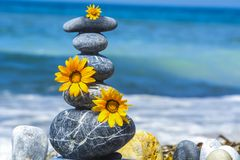 Zen stones, flowers and peace concept Royalty Free Stock Photo