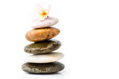 Zen stones with frangipani flower Stock Photography