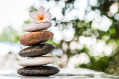 Zen stones with frangipani flower on bokeh background Stock Photos