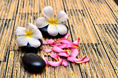 Zen stones with frangipani flower Stock Images