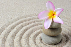 Zen stones with frangipani flower with raked sand background. Selective focus of zen stones with frangipani flower with raked sand background Stock Image