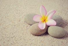 Zen stones and Frangipani Royalty Free Stock Photos