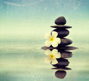 Zen stones with frangipani. Vintage retro hipster style travel image of Zen spa concept background - Zen massage stones with frangipani plumeria flower in water royalty free stock images