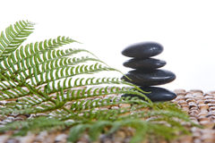 Zen Stones on a grass mat with a fern Stock Images