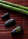 Zen stones and green bamboo. In the water stock photos