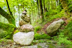 Zen stones in green forest, nature environment stock image