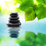 Zen stones & green leaves. Background royalty free stock photography