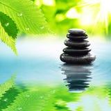 Zen stones & green leaves stock image