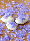 Zen stones and herbal salt Stock Photography