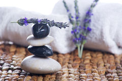 Zen stones with lavender. On a grass matte Stock Photos