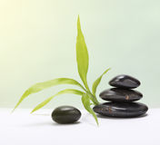Zen stones with leaf. Stack of zen stones with leaves stock photography