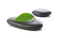 Zen stones with leaf. Wet zen or hot stones with leaf on white background Royalty Free Stock Photo