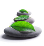 Zen stones with leaves. On white background.Shallow DOF Royalty Free Stock Image