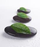 Zen stones with leaves Stock Photos