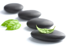Zen stones with leaves isolated Stock Photo