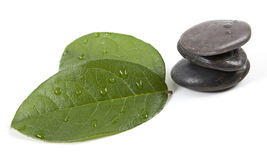 Zen stones and leaves with water. Drops, isolated. spa background Royalty Free Stock Photography
