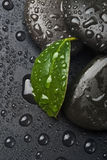 Zen stones and leaves with water Stock Photo