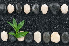 Zen stones and leaves with water drops Stock Photo