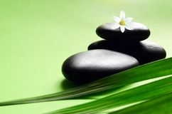 Zen stones with leaves and white flower. Spa concept royalty free stock images
