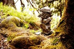 Zen stones. Stones lying in the forest near stem of  tree Stock Photo