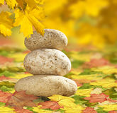 Zen Stones Of Autumn Leaves Royalty Free Stock Image