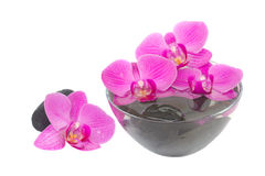 Zen stones and orchid Stock Photo