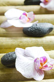 Zen stones with orchid abstract closeup still life Stock Photo