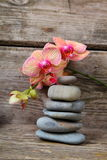 Zen stones and orchid Stock Photography
