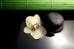 Zen stones with orchid Royalty Free Stock Photography