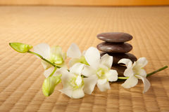 Zen stones and orchids Stock Photography