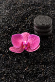 Zen stones and orchids.  SPA. Royalty Free Stock Photography