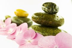 Zen stones and pink flower Stock Photos