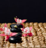 Zen stones with pink flowers on a grass matte. Shot in the studio Stock Photography