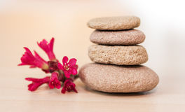 Zen stones and red flower Stock Photography