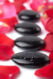 Zen stones and rose petals isolated Stock Photos